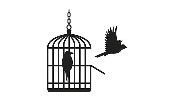 Dolls-House-Caged-Birds