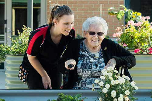 Aged Care & Disability