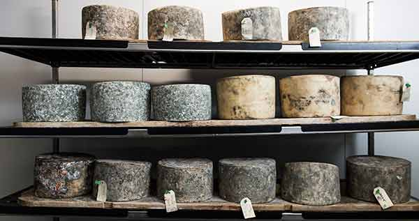 hostpitality-tourism-cheese-aging